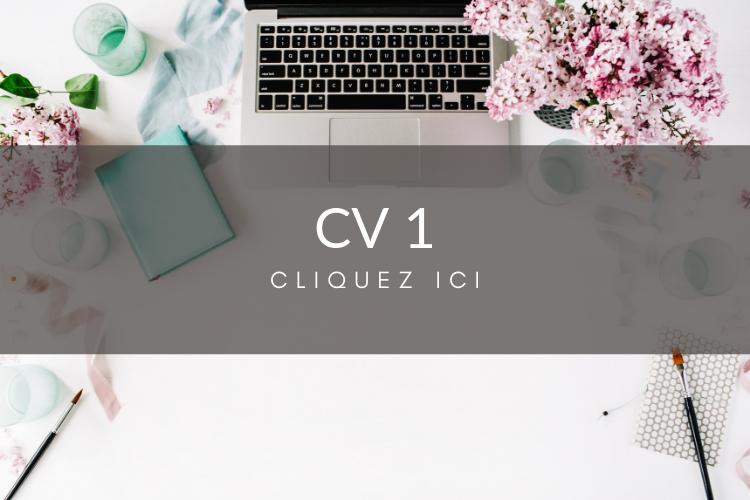 exemple de cv service  u00e0 la client u00e8le
